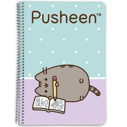 A5 Pusheen notebook